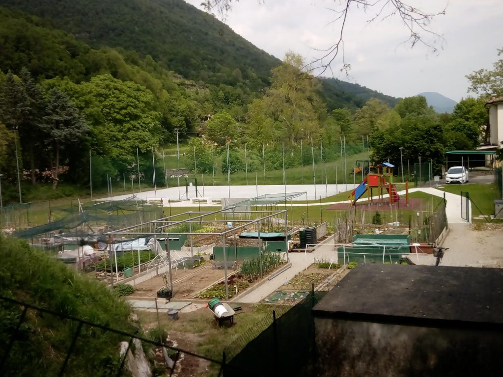 Verde e giardinaggio